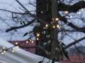 Weihnachtsmarkt Bobeck 2017 (28)